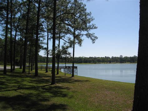 Conecuh National Forest - Wikipedia