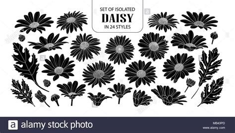 Set of isolated silhouette daisy in 24 styles