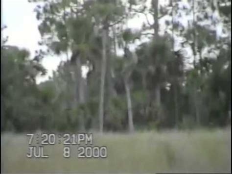 Dave Shealy's 2000 Skunk Ape Footage - YouTube