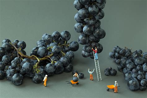 Big Appetites With Miniature Toys Photographs (Christopher