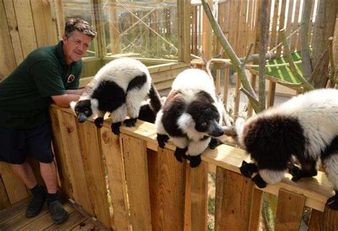 Zoo at Fenn Bell Inn St Mary Hoo opens JustGiving campaign